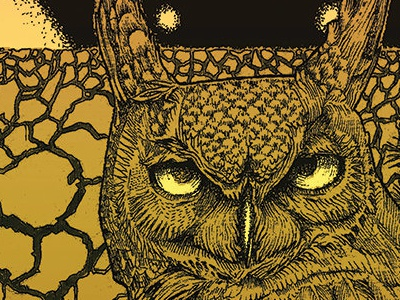 GC Records Album Art - 2014 illustration vinyl album art band art owl gc records