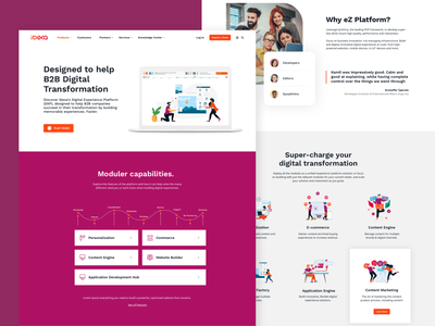 Ibexa Product Page web logo ux ui landing page homepage branding website icons illustration