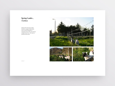 Layout Exploration 2 clean design brand minimal simple white typography print travel photography