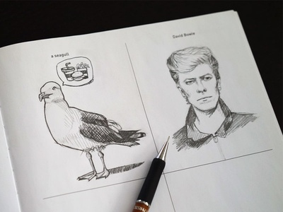 642 Things To Draw - Seagull
