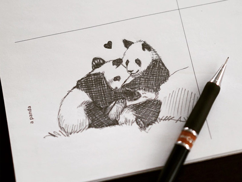 642 things to draw pandas by suejanna dribbble dribbble
