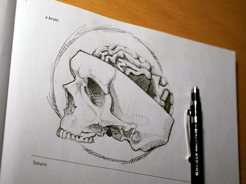 642 Things to Draw - A Brain by SueJanna on Dribbble