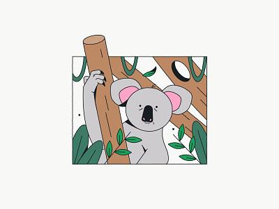 Koala cute plants wild australia koala animal illustration