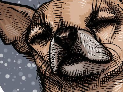 Ruff Life drawing dog illustration chihuahua
