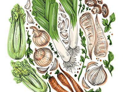 Vegetables recipe illustration food art artwork art hatching crosshatching drawing illustration veggies vegetables