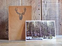 Zine - Wanderings - Twin Peaks