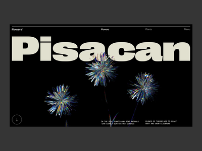 Glass Flower art direction c4d octane interaction web typography ui