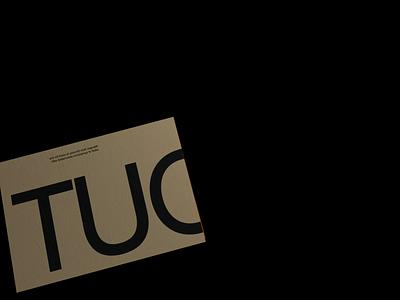 Allergic Posters №002 design branding octane interaction web typography ui