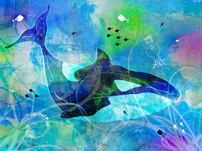 Orca colourful fish ocean orca nature illustration digital