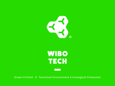 WIBO TECH Branding & Logo Design