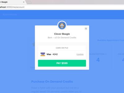 Checkout popup card on file credit card payments modal overlay checkout