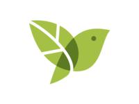 Leaf + Bird