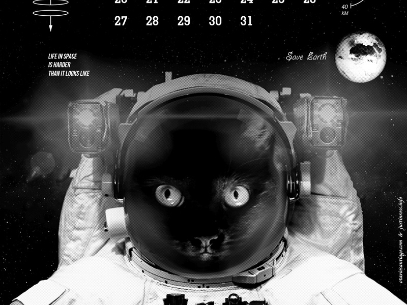 2020 Cats + Dog Space Journey astronaut graphicdesign shiba inu dog calendar journey space cats