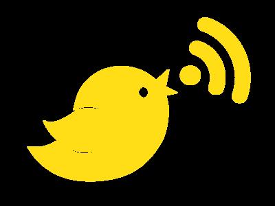 Noisybird Branding