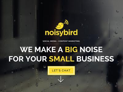 Noisybird Brand - Web Shot