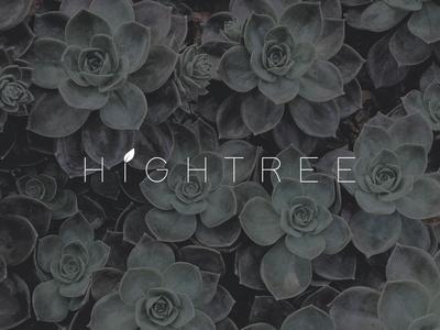 HighTree - Logo 2