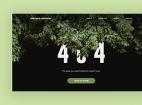 Daily Ui Challenge 008: 404 Page