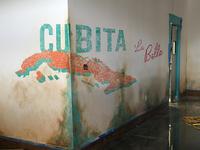 Cubita: La Bella Mock Up