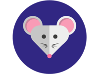 lil' mouse in da house