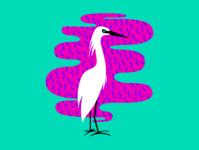 Birds of Summer - Egret