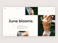 Bees + Bones | Home page