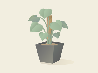 Philodendron illustration indoor plant