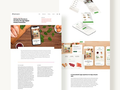 Case Study sketch food cms mega nav case study menu mobile web design navigation ui ux pets
