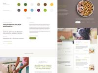 Website Stylesheet