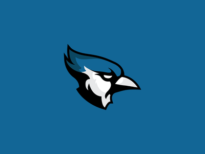 Bluejays Sports Logo icon academic college bird bluejay blue vector graphic design identity illustration logo