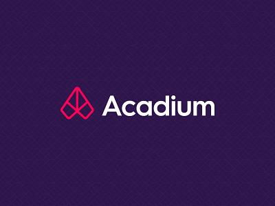 Acadium Rebrand branding logo web art direction rebrand illustration