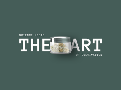 Six Labs Cannabis Brand Identity brand identity website design packaging cannabis print design logo ui agency design branding