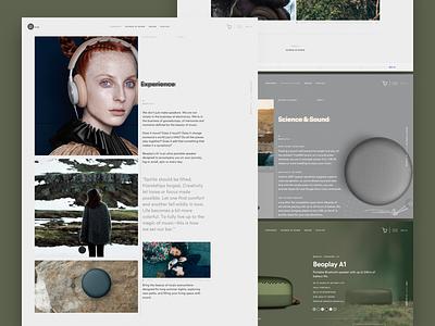 BeoPlay A1 Concept ui  ux design product design design agency ux design ui