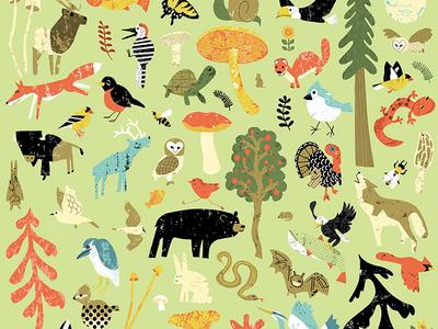 Wild Life playful birds trees bear child fun illustration animals