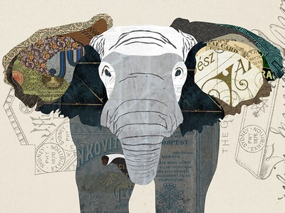 Elephant Collage wild life animal cut and paste art print illustration design vintage paper digital collage collage elephant