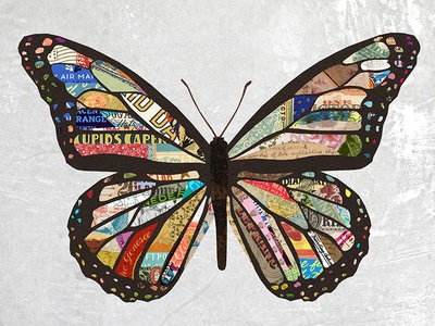 Collage Butterfly design paper mixed media vintage illustration digital collage collage butterfly