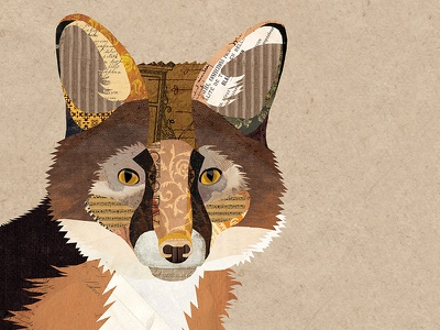 Mr. Fox collage illustration wildlife nature woodland vintage collage vintage paper collage digital collage fox collage animal fox