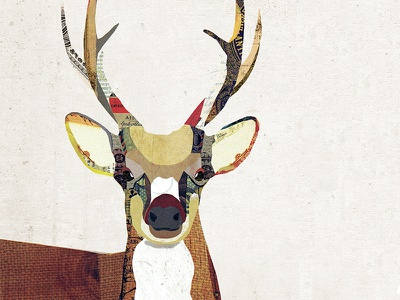 Deer Collage antlers vintage paper nature animal rustic woodland collage illustration digital collage collage deer