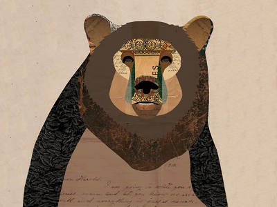 Brown Bear Collage woodsforrest nature outdoors rustic woodland animal collage illustration digital collage collage brown black bear