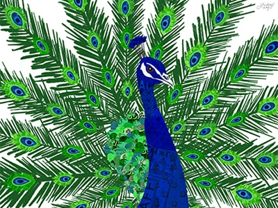 Peacock Collage royal blue lindseykayco digital collage green blue peacock illustration peacock collage zoo feathers feather bird peacock