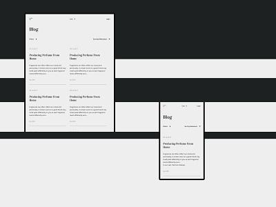 LILITH COCAINE interaction minimalism swiss layout concept digital pure clean typography branding fashion logo grid design desktop site web minimal ux ui