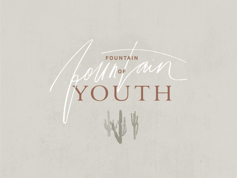 Fountain of Youth graphic brand design branding type logo design illustrate illustration calligraphy typography handdrawn handlettering