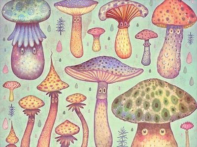Fun, Fun, Fungi colorful watercolors illustration picture book book fungi mushrooms