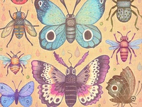 Moths, Bees and Bumblebees