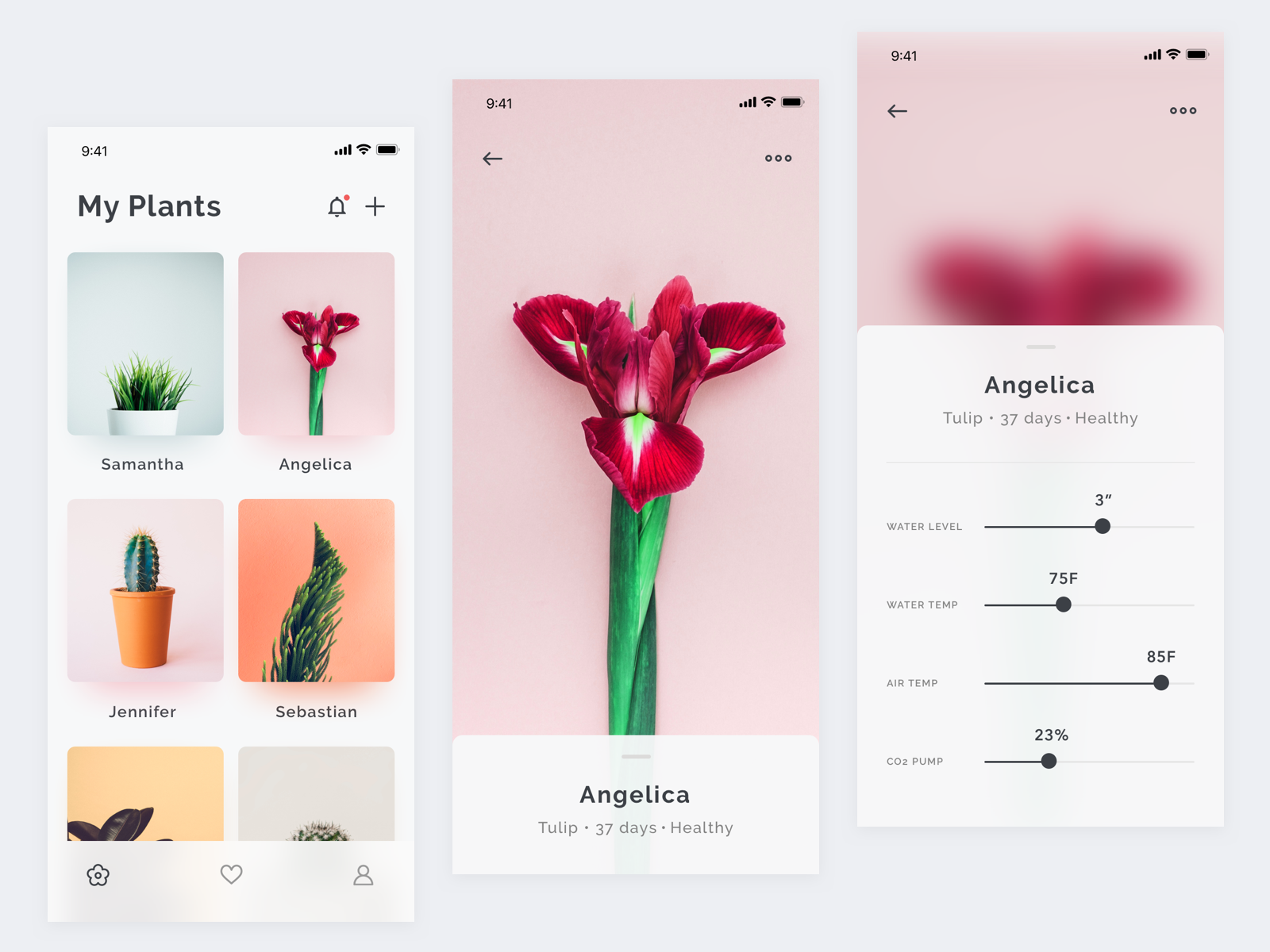 Plants app dribbble shot 1