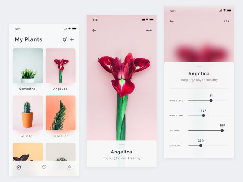 Plants App Concept + Sketch Freebie iphone x photography download sketch freebie plants mobile ios iphone app