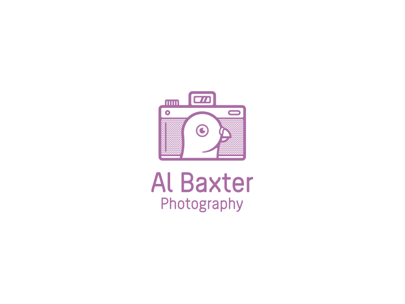 Al Baxter Photography al baxter all the pretty colors nathan walker brand photography pigeon camera logo