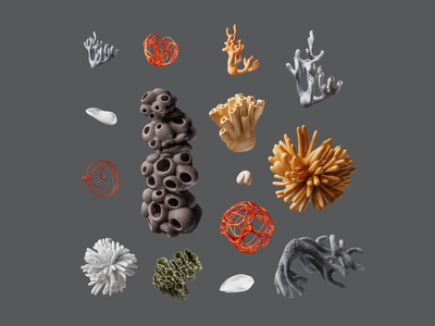 Make: Coral Composition render composition illustration organic colors nature abstract design coral