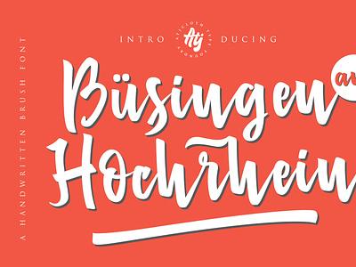 Busingen Am Hochrhein type art type design script typeface typedesign typogaphy clean font font family brush fonts font awesome script fonts font design fonts script font brush font typeface lettering type font