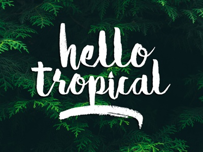 Hello Tropical ligature fast ink hand draw hand lettering lettering marker brush typeface type font