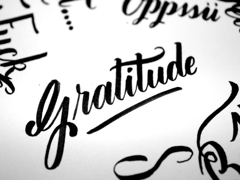 Gratitude by abi dribbble